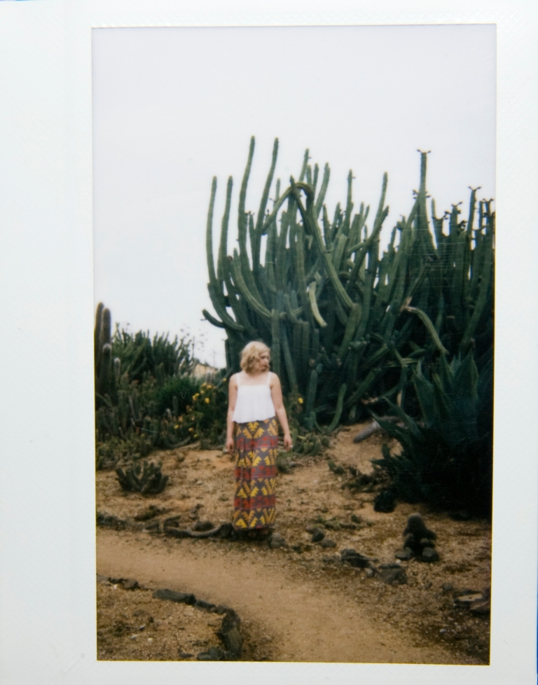 LISA FRIELING WILLOW CACTUS