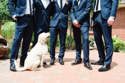 wedding-3-4